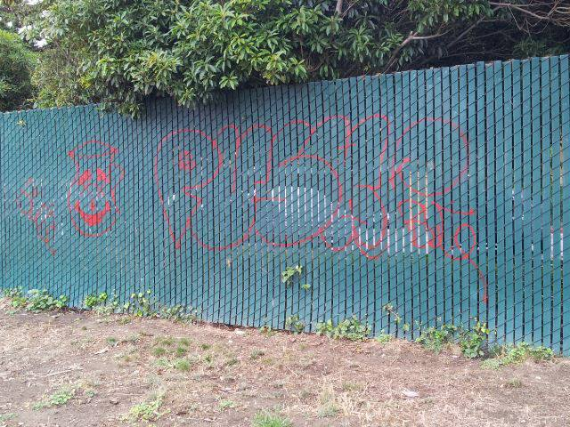 7.2013 Graffiti Orange Park