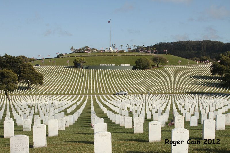 Rows upon rows of graves; we must never forget