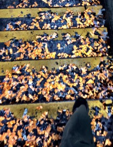 SF Giants Parade Confetti on Embarcadero BART Stairs Photo: Moira Wilmes