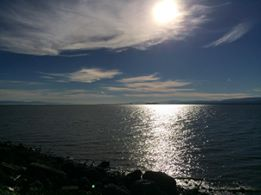 RamonVelia De La Cruz captured this shot at Oyster Point Marina