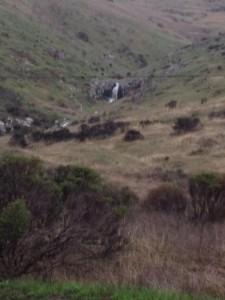 SBM waterfall above Hillside  Photo: Maggie Najarro