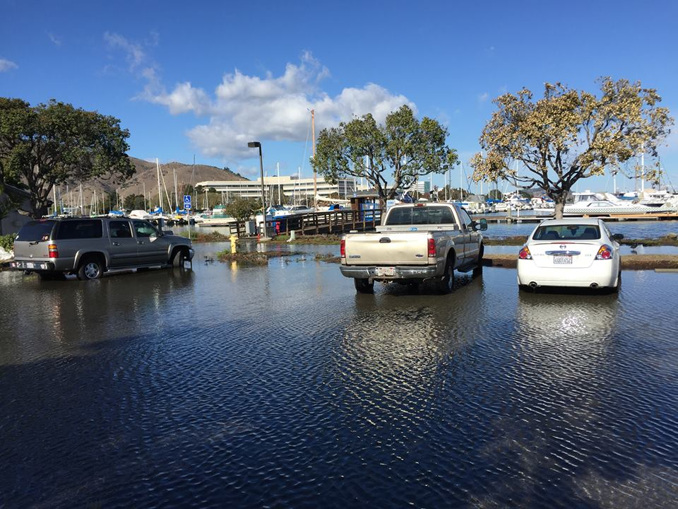 Parking Area King Tide flooding at Oyster Point Marina—Wed., Nov. 25, 2015 Photo: S Brennan