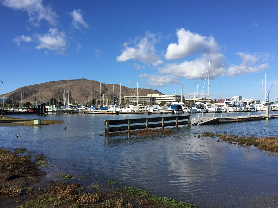 King Tides and Climate Change by the EPA – Everything South City
