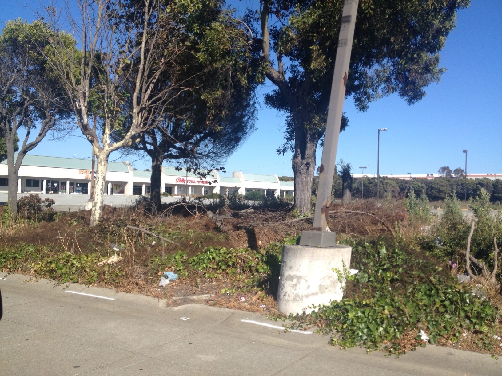 Dead trees, vegetation, and trash blight the abandoned shopping center